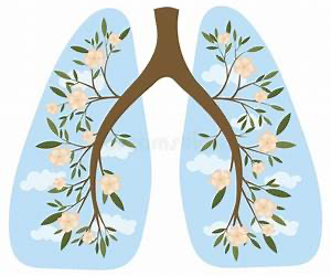 When my lungs stopped talking to my heart